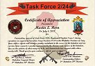 Task Force 2/24